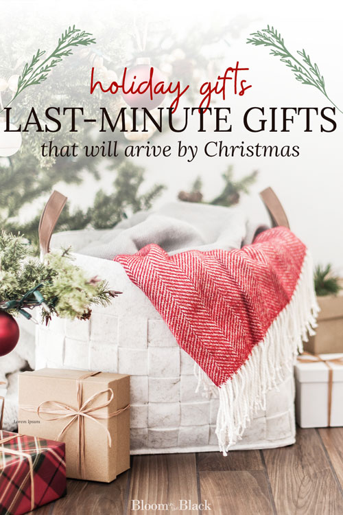 Here are 8 great gifts you can order at the last-minute and have arrive by Christmas. Either with 2-day shipping or easily picked up while running holidays errands.