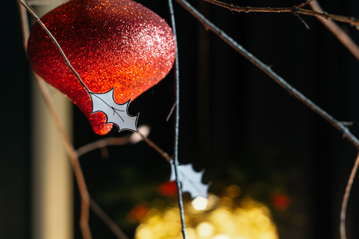 Close-up of ornament and winter branches.
