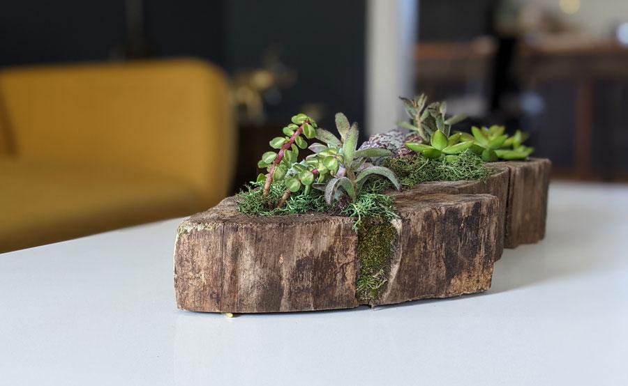 finished planter